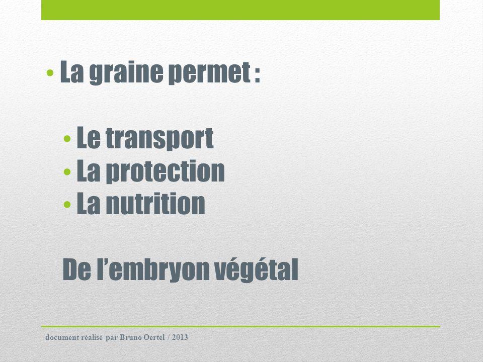 3) Classification des graines végétales ProtéineLipideGlucide CéréalesRiz9282 Blé12280 Maïs126,579 OléagineusesColza304020 Tournesol35455 LégumineusesHaricot blanc211,558 Lentille26156 Document 6 : Composition moyenne des graines (% MS) Donner le composant majoritaire dans les graines de céréales, dans les graines oléagineuses et dans les graines légumineuses document réalisé par Bruno Oertel / 2013