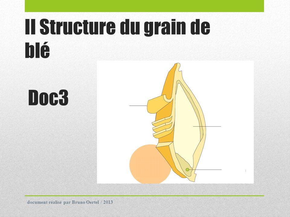 2) Composition de la pâte.On utilise une farine panifiable donc riche en protéines.