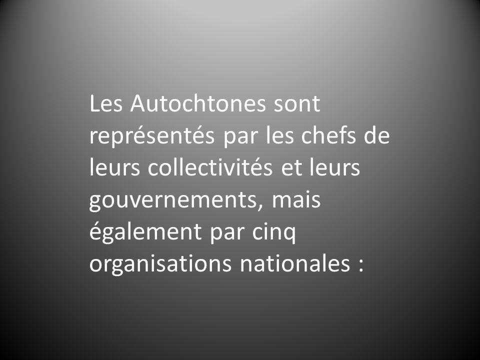 Les Autochtones sont représentés par les chefs de leurs collectivités et leurs gouvernements, mais également par cinq organisations nationales :