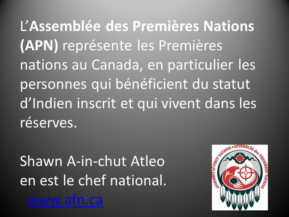 LAssemblée des Premières Nations (APN) représente les Premières nations au Canada, en particulier les personnes qui bénéficient du statut dIndien inscrit et qui vivent dans les réserves.