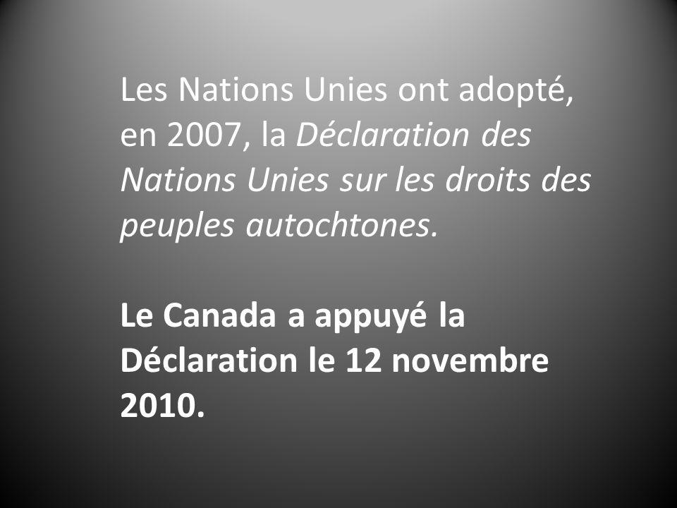 Les Nations Unies ont adopté, en 2007, la Déclaration des Nations Unies sur les droits des peuples autochtones. Le Canada a appuyé la Déclaration le 1