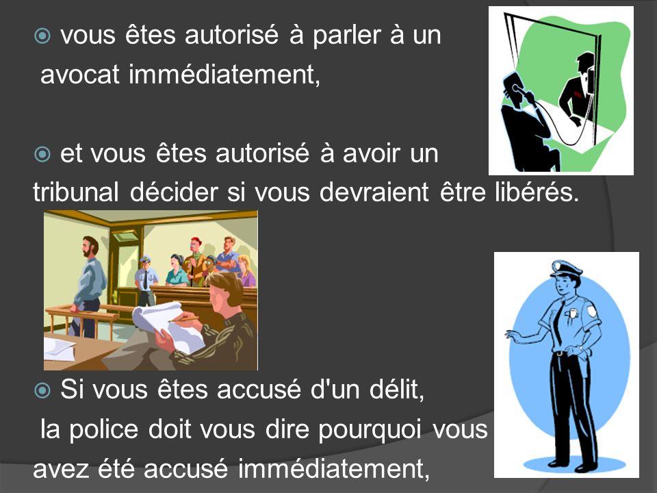 vous êtes autorisé à parler à un avocat immédiatement, et vous êtes autorisé à avoir un tribunal décider si vous devraient être libérés.