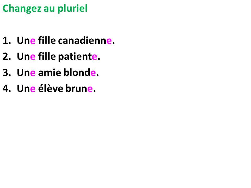Changez au pluriel 1.Une fille canadienne. 2.Une fille patiente. 3.Une amie blonde. 4.Une élève brune.