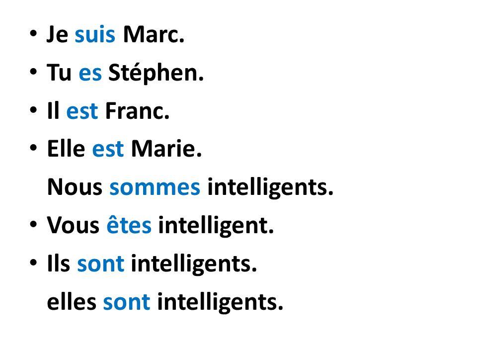 Je suis Marc. Tu es Stéphen. Il est Franc. Elle est Marie. Nous sommes intelligents. Vous êtes intelligent. Ils sont intelligents. elles sont intellig