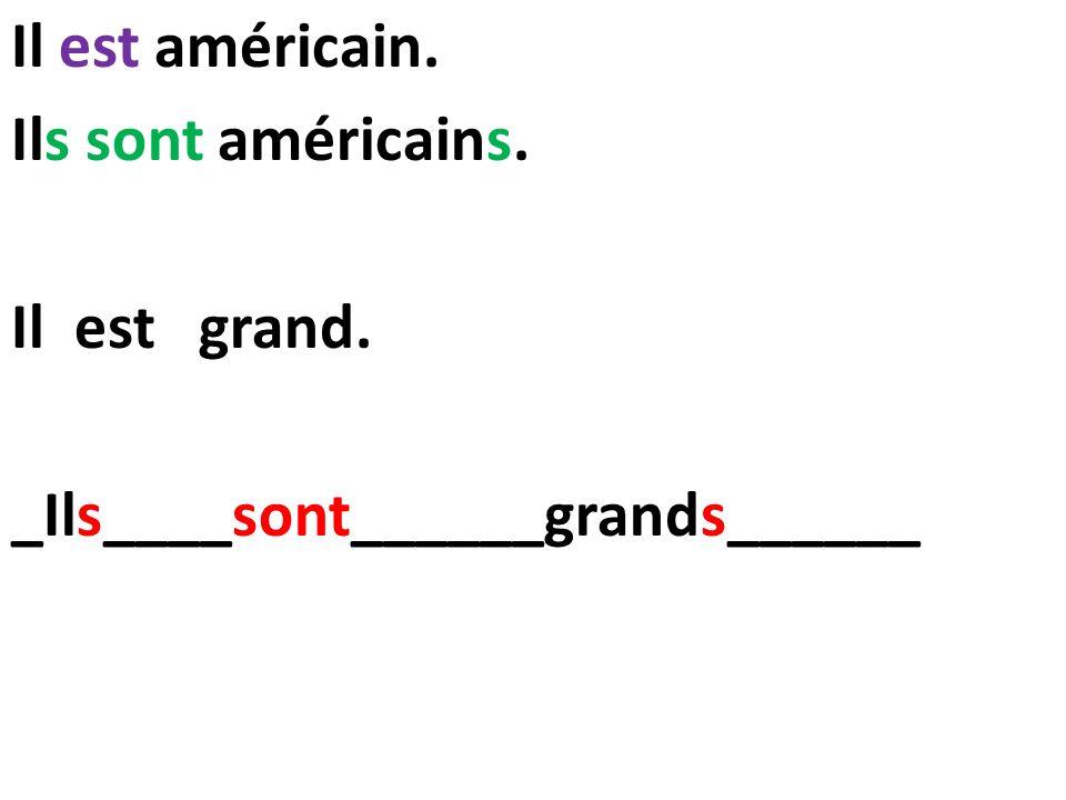Il est américain. Ils sont américains. Il est grand. _Ils____sont______grands______