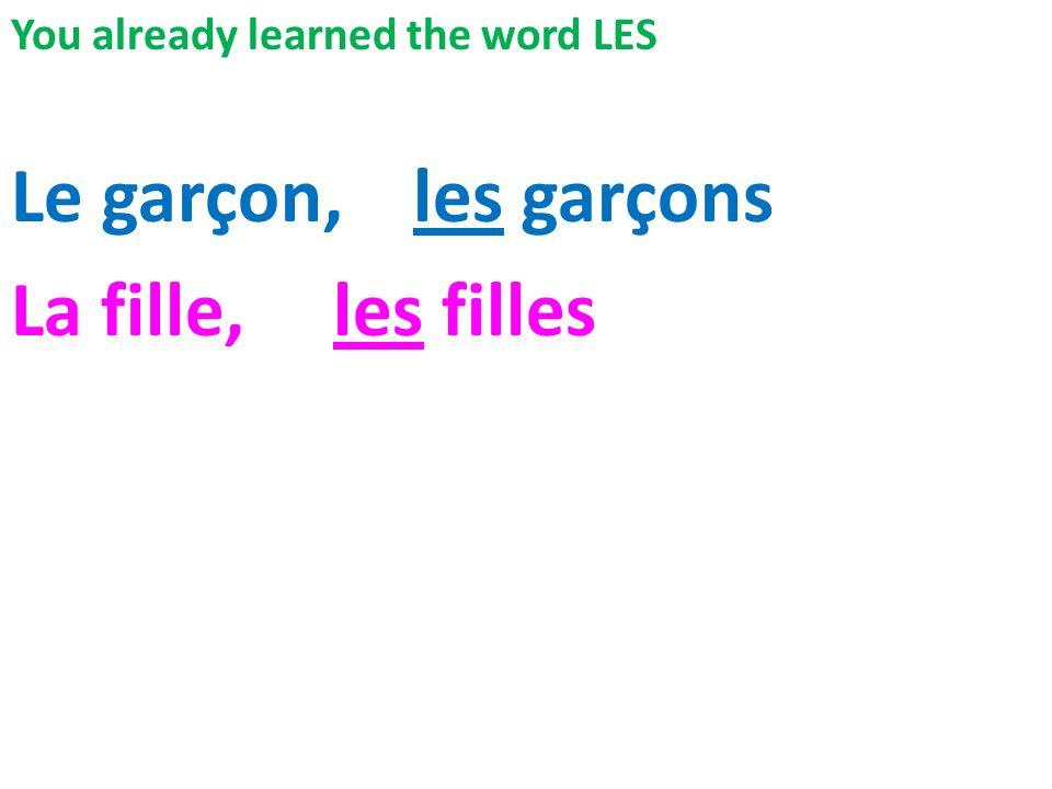 You already learned the word LES Le garçon, les garçons La fille, les filles