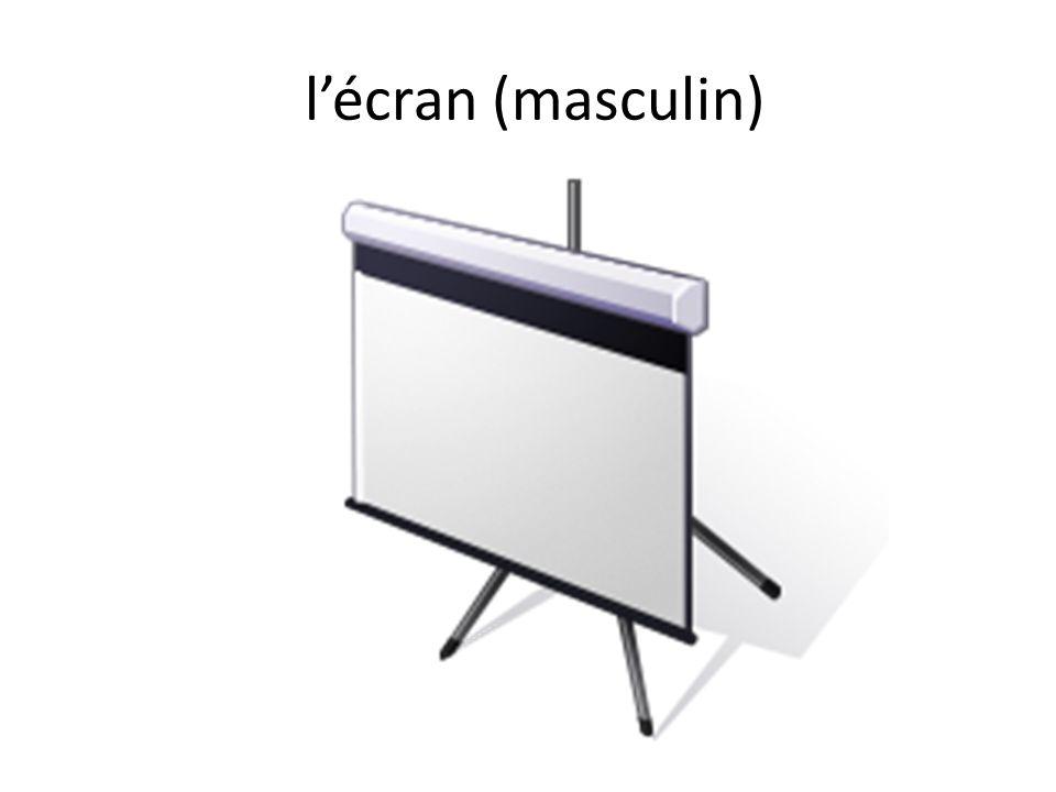 lécran (masculin)
