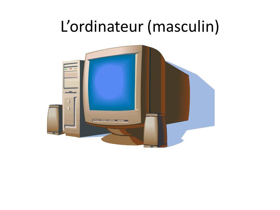 Lordinateur (masculin)