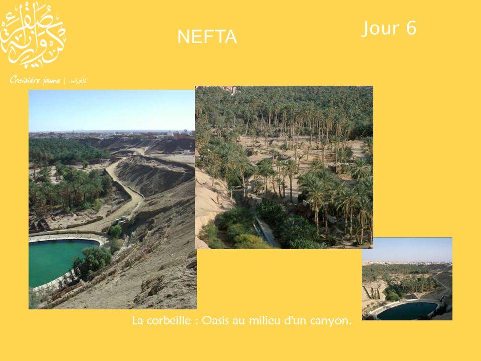La corbeille (Oasis au milieu d'un canyon). La corbeille : Oasis au milieu d'un canyon. Jour 6 NEFTA