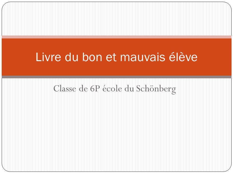 Classe de 6P école du Schönberg Livre du bon et mauvais élève