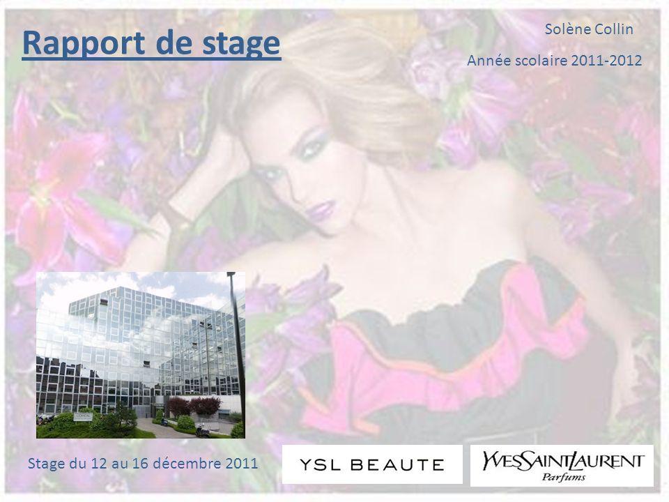 Année scolaire 2011-2012 Solène Collin Rapport de stage Stage du 12 au 16 décembre 2011