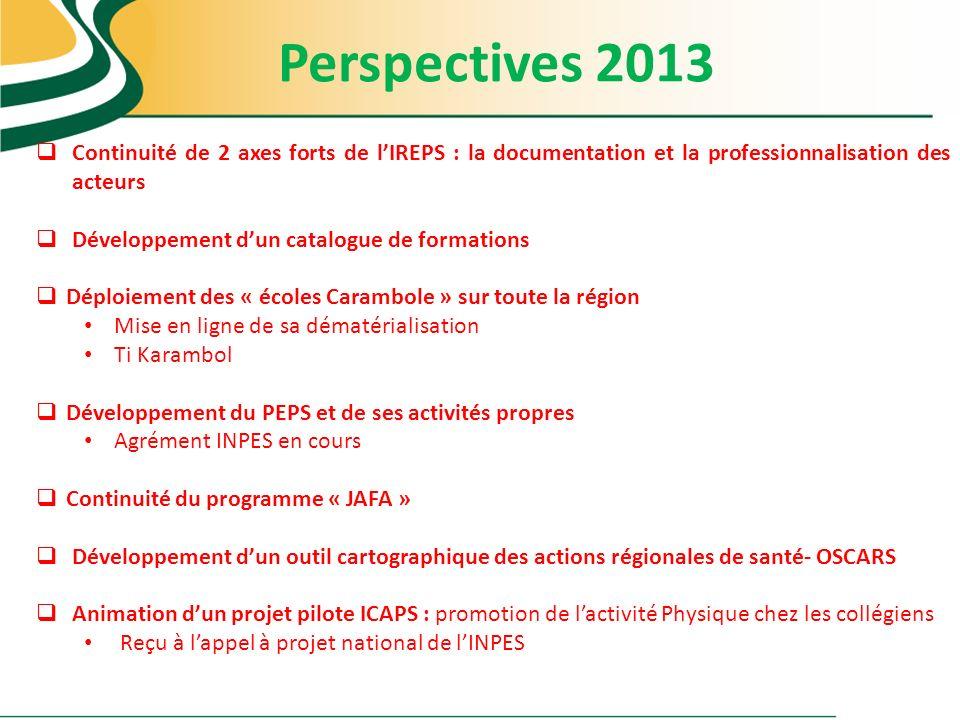 Perspectives 2013 Continuité de 2 axes forts de lIREPS : la documentation et la professionnalisation des acteurs Développement dun catalogue de format