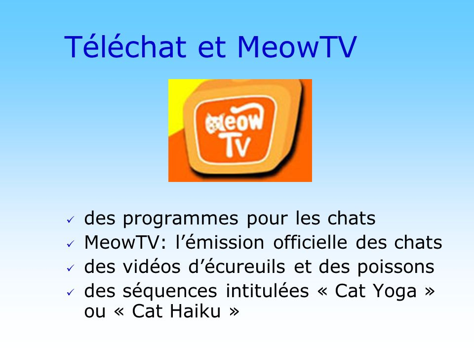© DN Téléchat et MeowTV des programmes pour les chats MeowTV: lémission officielle des chats des vidéos décureuils et des poissons des séquences intitulées « Cat Yoga » ou « Cat Haiku »