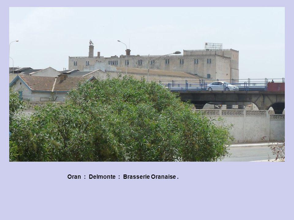 Oran : Delmonte : 2, Avenue Sidi Chami. La Brasserie Oranaise