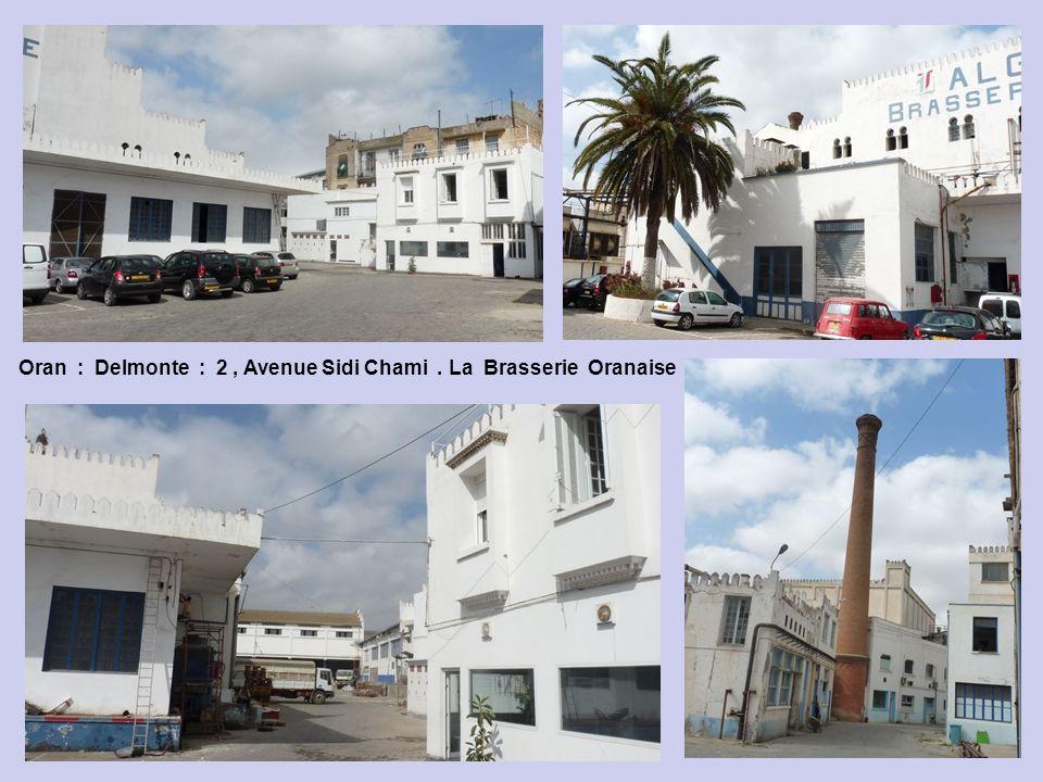 Oran : Delmonte : 2, Avenue Sidi Chami - Brasserie Oranaise : la bière ne sappelle plus « 33 », mais … »31 », numéro du département dOran.