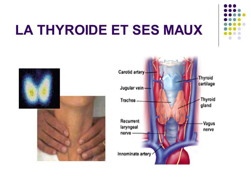 Grossesse et thyroide