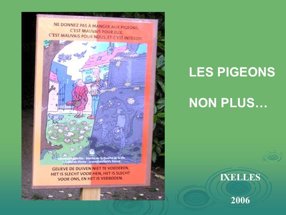 NE PAS NOURRIR LES CANARDS… HAMBOURG 2006