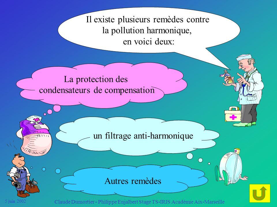 5 juin 2002 Claude Dumortier - Philippe Enjalbert Stage TS-IRIS Académie Aix-Marseille Les remèdes