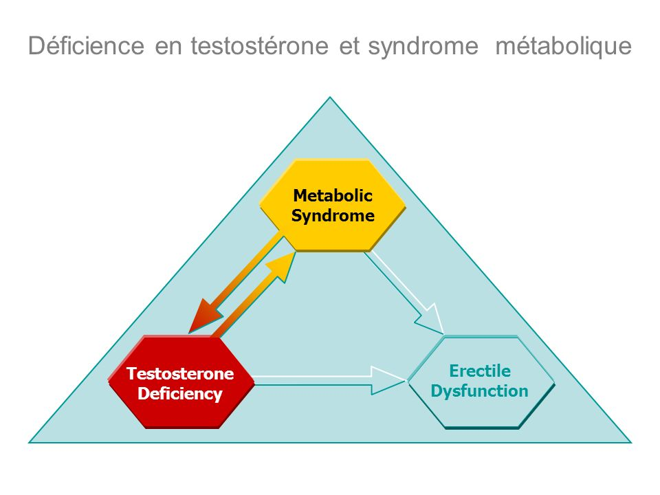 Déficience en testostérone et syndrome métabolique Erectile Dysfunction Testosterone Deficiency Metabolic Syndrome