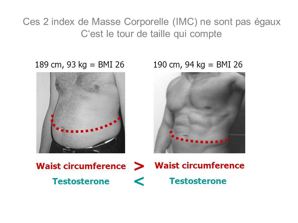 Ces 2 index de Masse Corporelle (IMC) ne sont pas égaux Cest le tour de taille qui compte 189 cm, 93 kg = BMI 26190 cm, 94 kg = BMI 26 Waist circumfer