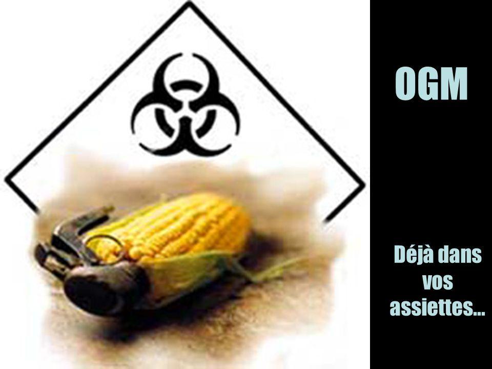 OGM Déjà dans vos assiettes…