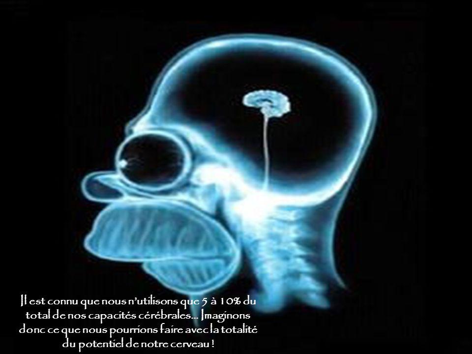 Il est connu que nous nutilisons que 5 à 10% du total de nos capacités cérébrales… Imaginons donc ce que nous pourrions faire avec la totalité du potentiel de notre cerveau !