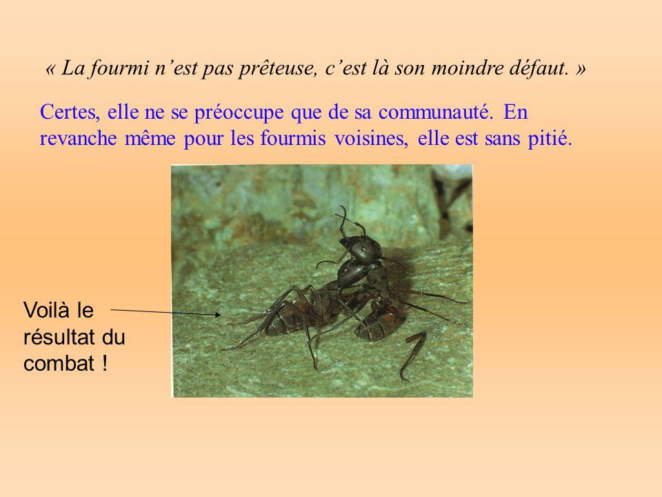 « La fourmi nest pas prêteuse, cest là son moindre défaut. » Certes, elle ne se préoccupe que de sa communauté. En revanche même pour les fourmis vois
