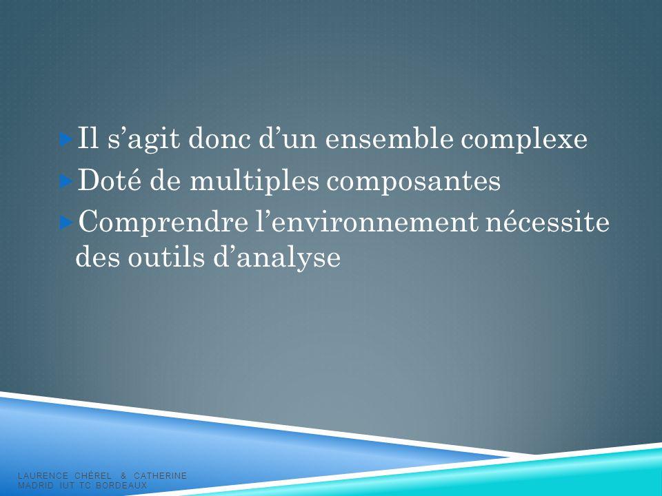 Il sagit donc dun ensemble complexe Doté de multiples composantes Comprendre lenvironnement nécessite des outils danalyse LAURENCE CHÉREL & CATHERINE