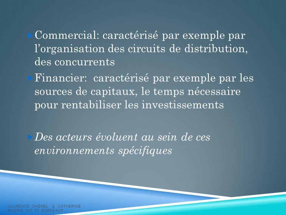 Commercial: caractérisé par exemple par lorganisation des circuits de distribution, des concurrents Financier: caractérisé par exemple par les sources