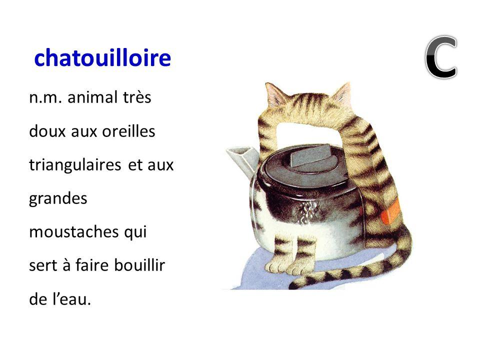chatouilloire n.m. animal très doux aux oreilles triangulaires et aux grandes moustaches qui sert à faire bouillir de leau.