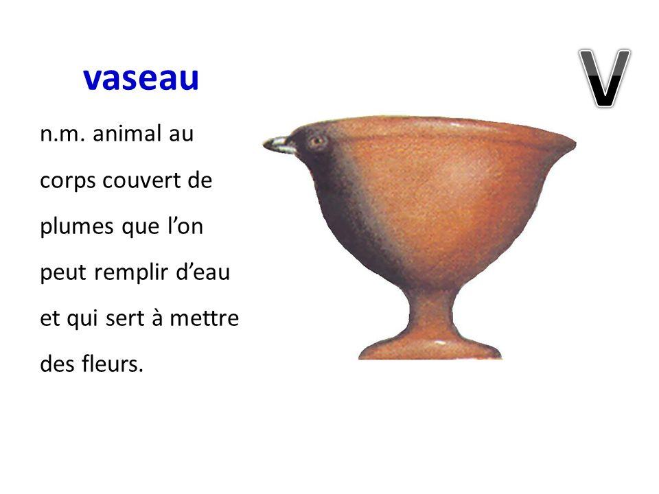 vaseau n.m. animal au corps couvert de plumes que lon peut remplir deau et qui sert à mettre des fleurs.