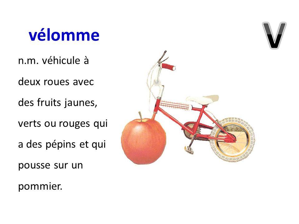 vélomme n.m. véhicule à deux roues avec des fruits jaunes, verts ou rouges qui a des pépins et qui pousse sur un pommier.