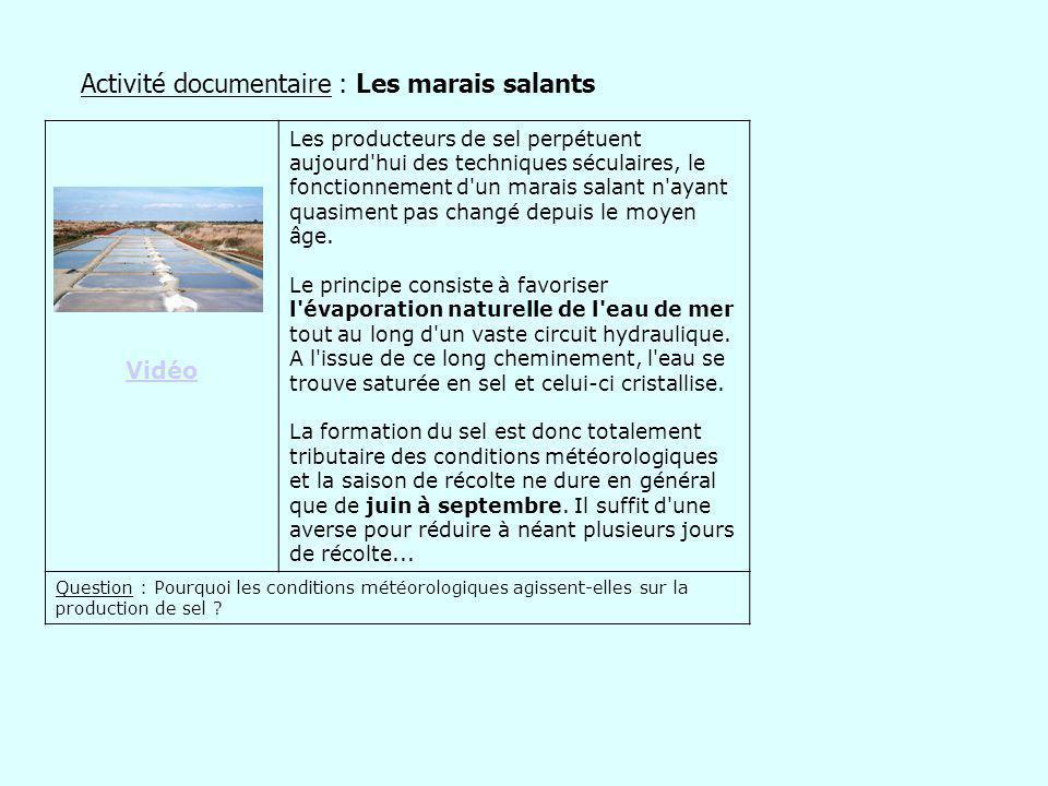 Activité documentaire : Les marais salants Vidéo Les producteurs de sel perpétuent aujourd'hui des techniques séculaires, le fonctionnement d'un marai