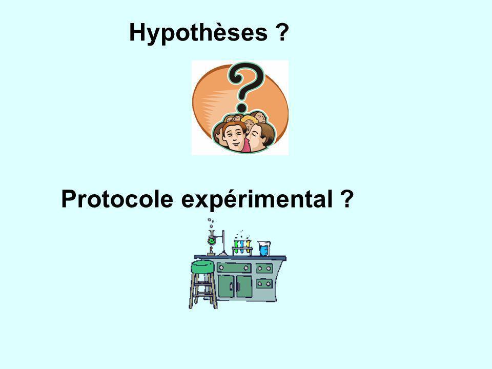 Hypothèses ? Protocole expérimental ?