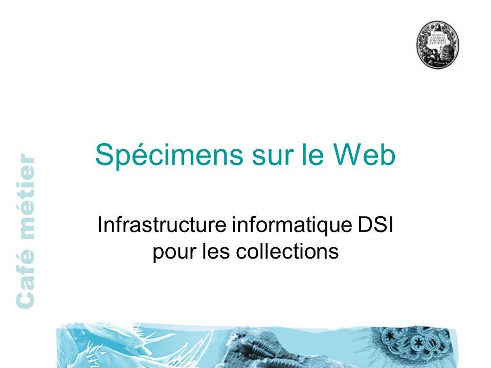 Café métier Spécimens sur le Web Infrastructure informatique DSI pour les collections