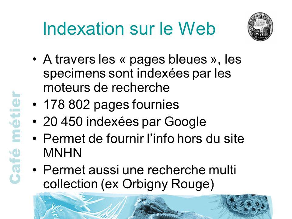 Café métier Indexation sur le Web A travers les « pages bleues », les specimens sont indexées par les moteurs de recherche 178 802 pages fournies 20 4
