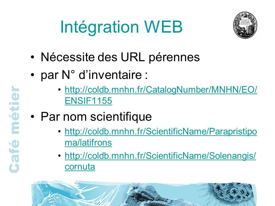 Café métier Intégration WEB Nécessite des URL pérennes par N° dinventaire : http://coldb.mnhn.fr/CatalogNumber/MNHN/EO/ ENSIF1155http://coldb.mnhn.fr/