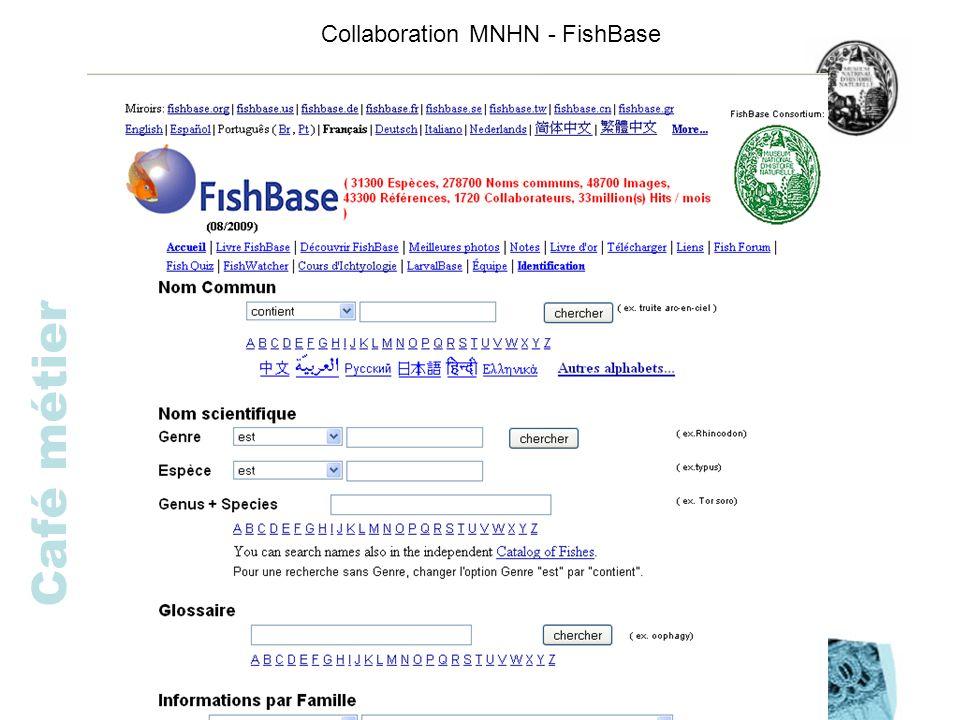 Café métier Collaboration MNHN - FishBase