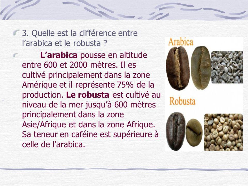 3. Quelle est la différence entre larabica et le robusta .