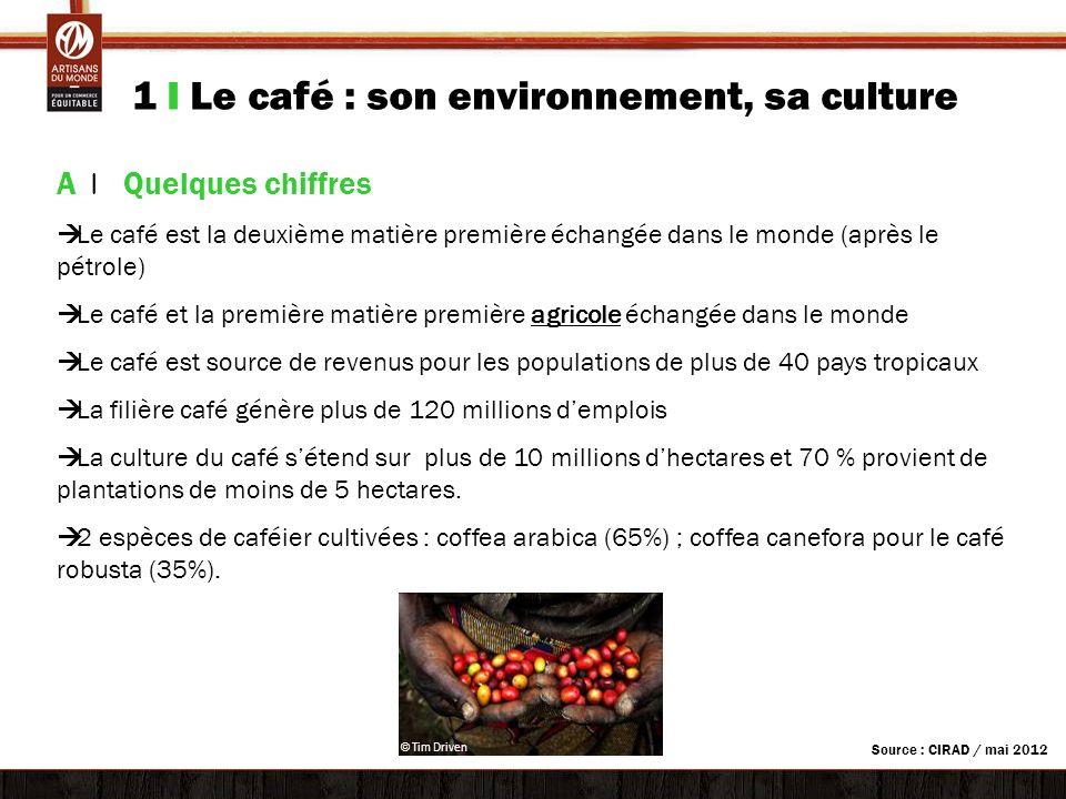 1 I Le café : son environnement, sa culture A | Quelques chiffres Le café est la deuxième matière première échangée dans le monde (après le pétrole) L