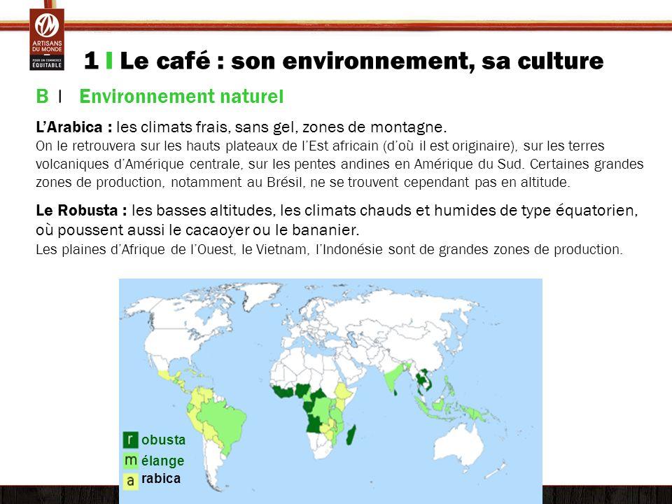 1 I Le café : son environnement, sa culture B | Environnement naturel LArabica : les climats frais, sans gel, zones de montagne. On le retrouvera sur
