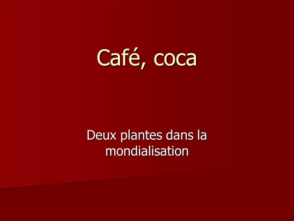 Café, coca Deux plantes dans la mondialisation