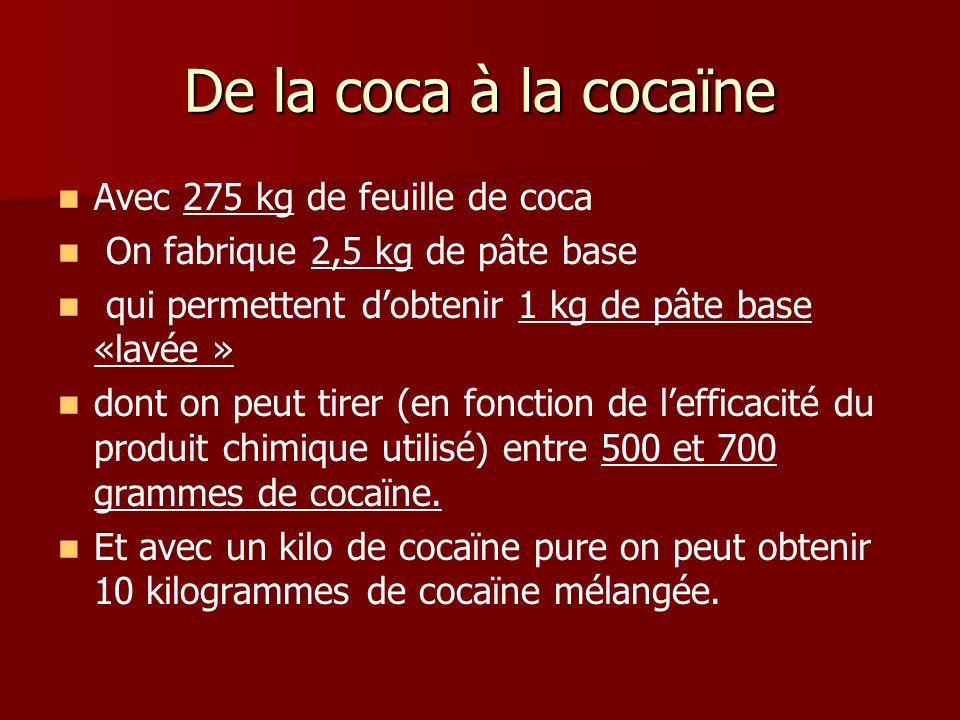 De la coca à la cocaïne Avec 275 kg de feuille de coca On fabrique 2,5 kg de pâte base qui permettent dobtenir 1 kg de pâte base «lavée » dont on peut