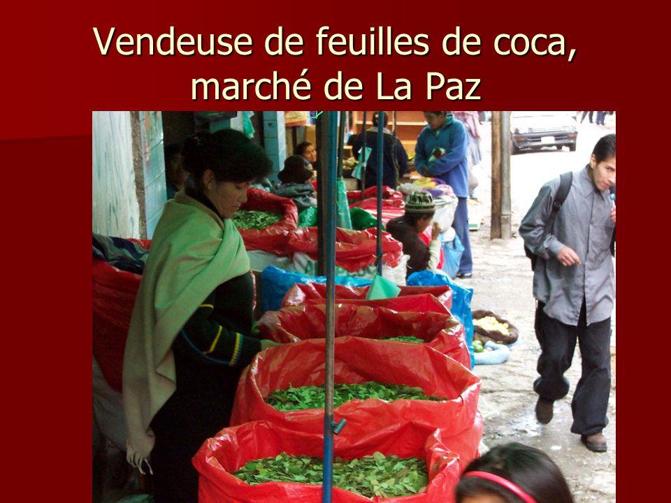 Vendeuse de feuilles de coca, marché de La Paz