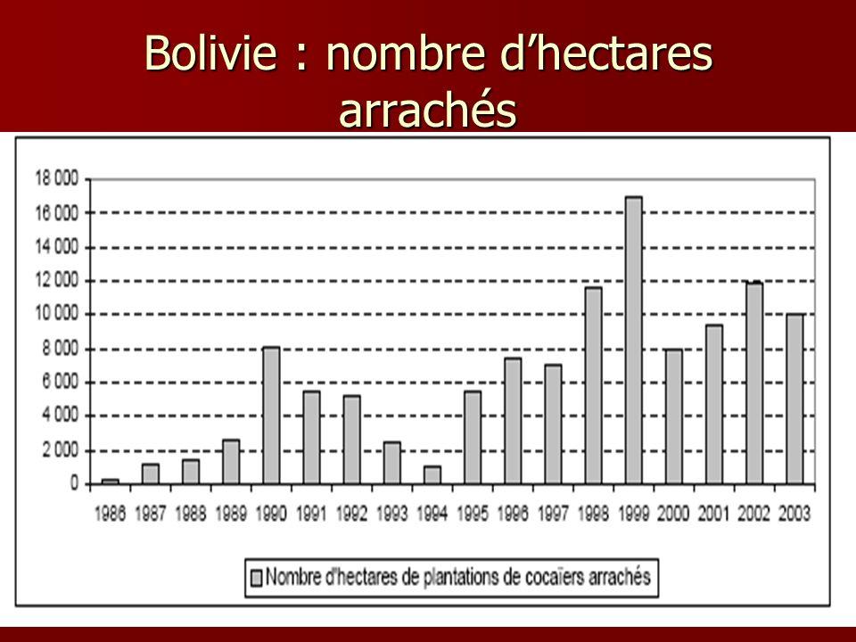 Bolivie : nombre dhectares arrachés