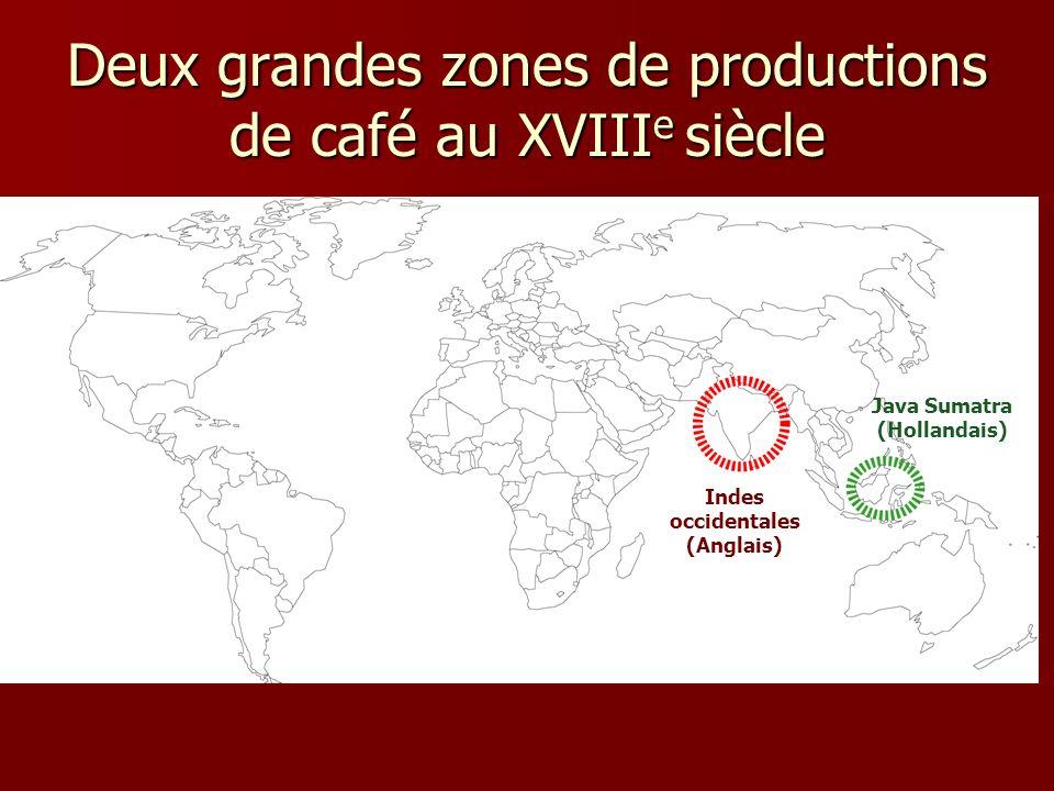 Deux grandes zones de productions de café au XVIII e siècle Indes occidentales (Anglais) Java Sumatra (Hollandais)