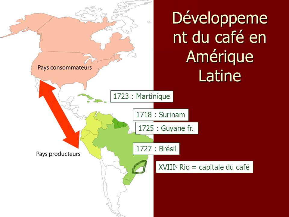Développeme nt du café en Amérique Latine 1718 : Surinam 1723 : Martinique 1727 : Brésil 1725 : Guyane fr. XVIII e Rio = capitale du café