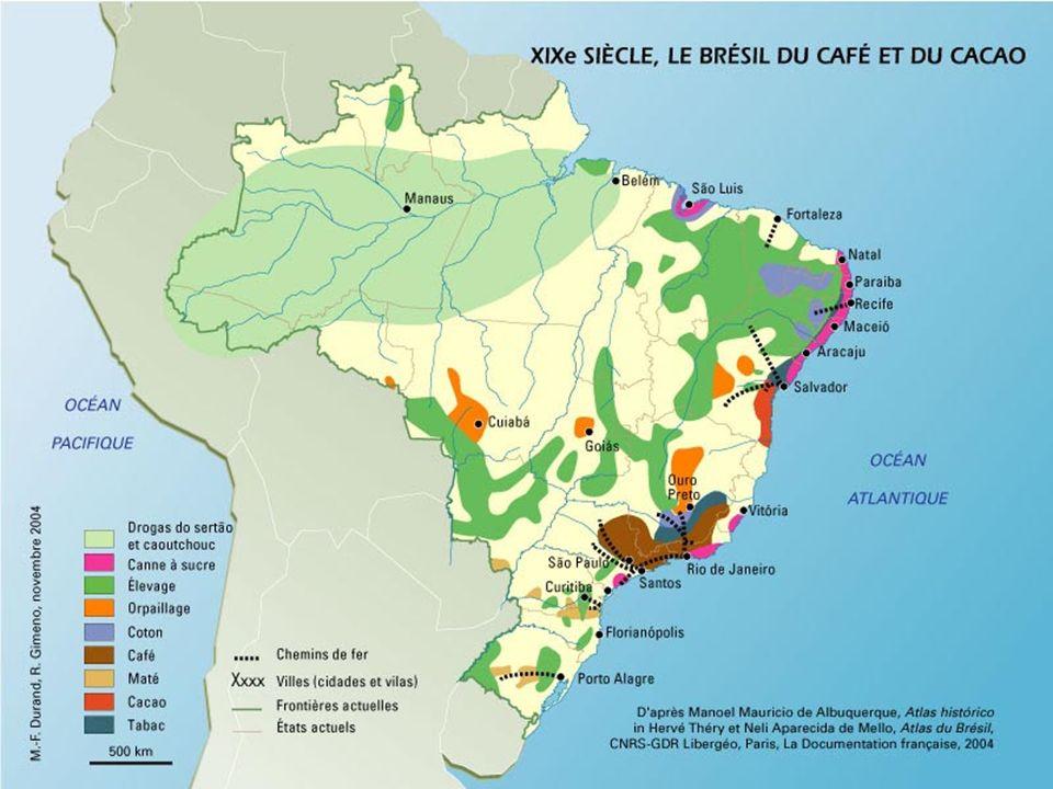 La feuille de coca est plus ancienne que la Bolivie Mur de La Paz, juillet 2003.