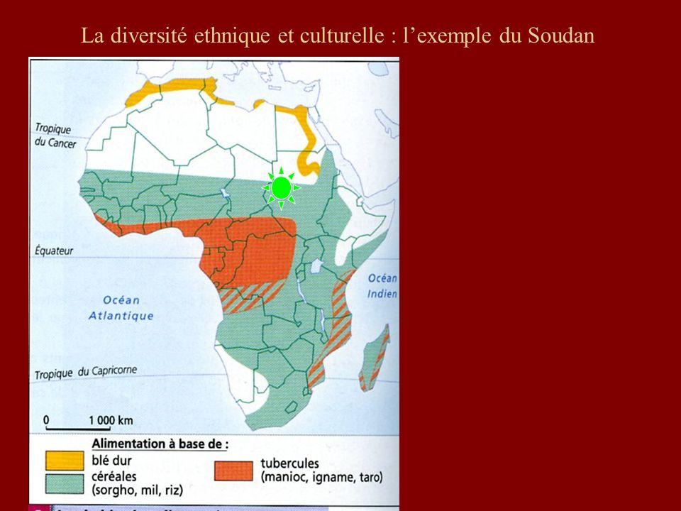 La diversité ethnique et culturelle : lexemple du Soudan