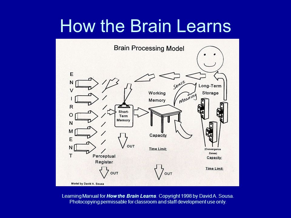 Learning Manual for How the Brain Learns. Copyright 1998 by David A.
